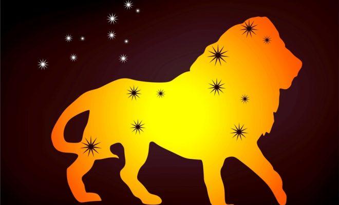 Sternzeichen Löwe Partner zurückgewinnen